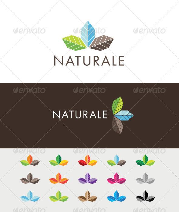 GraphicRiver Naturale Colors Logo 3584281