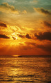 Sunset over the ocean. Vertical high resolution panorama. - PhotoDune Item for Sale