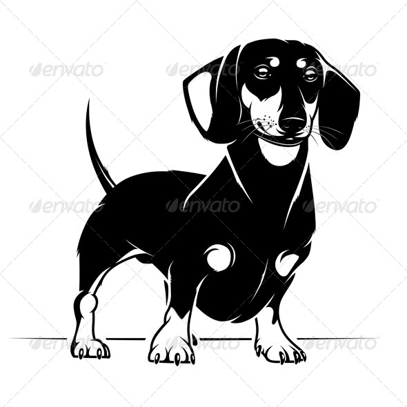 GraphicRiver Dachshund Dog 4380345