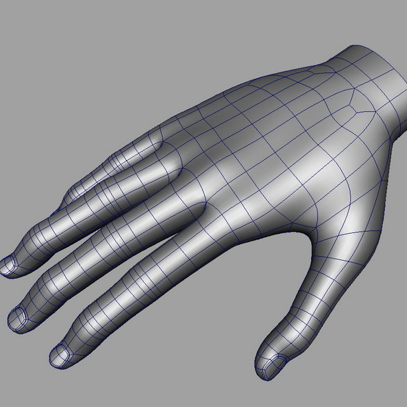 Hand Base mesh - 3DOcean Item for Sale