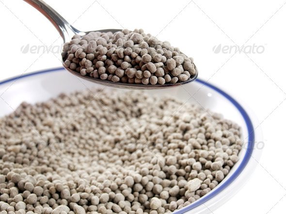 Eating fertilizer - Stock Photo - Images