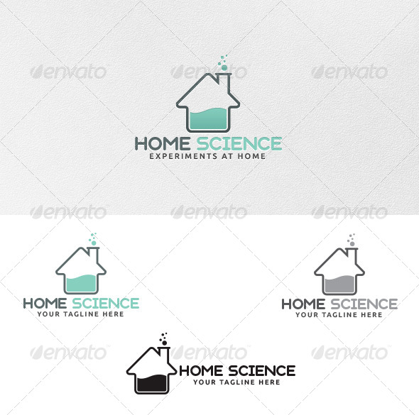 GraphicRiver Home Science Logo Template 4306941
