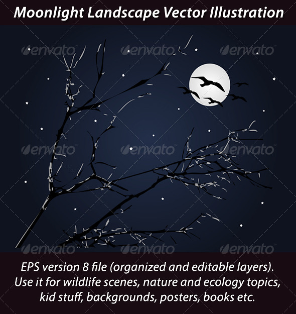 Moonlight Landscape Vector Illustration - Landscapes Nature