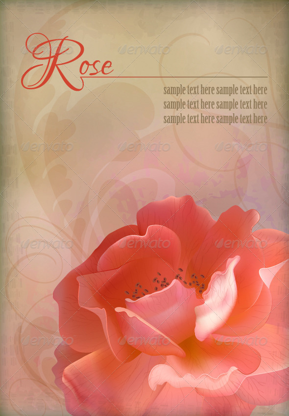 GraphicRiver Rose Vector Vintage Old Paper Textured Background 4393053