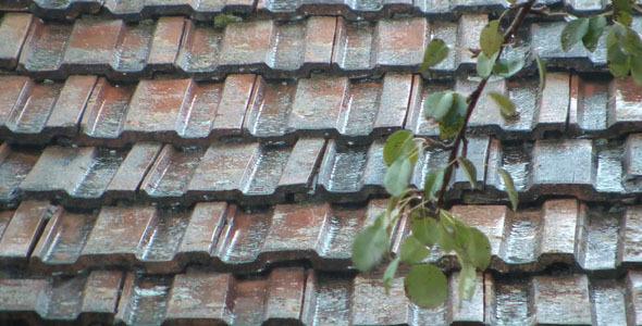 Rain On Roof Tiles