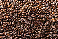 Coffee bean background - PhotoDune Item for Sale