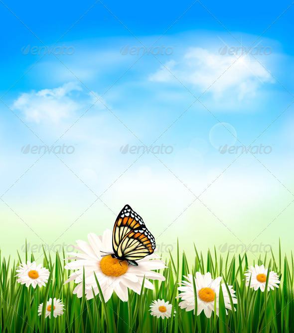 GraphicRiver Nature Background with Grass and Butterfly 4397898