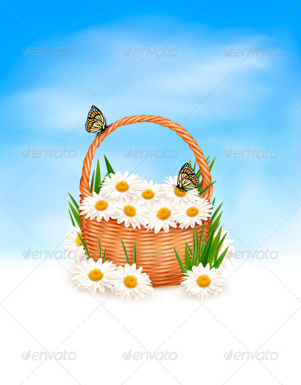 Nature Background with Summer Flowers