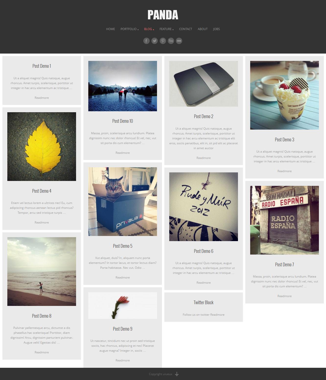 Panda Responsive Portfolio / Magazine WP theme