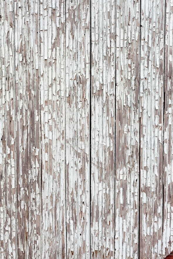 GraphicRiver grungy white background of natural wood 4399667