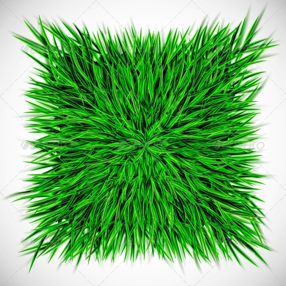 GraphicRiver Background with Square of Grass 4405596