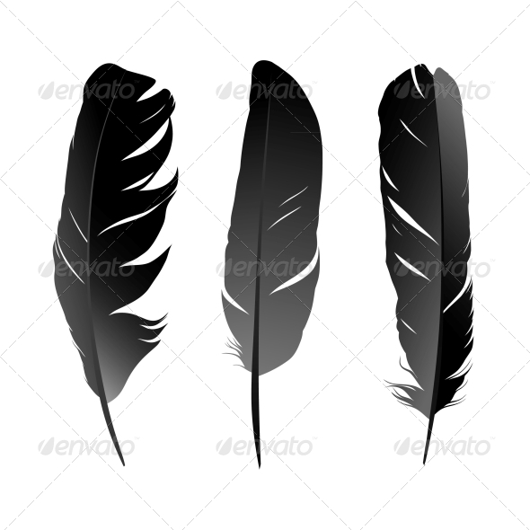 GraphicRiver Feather 4406655