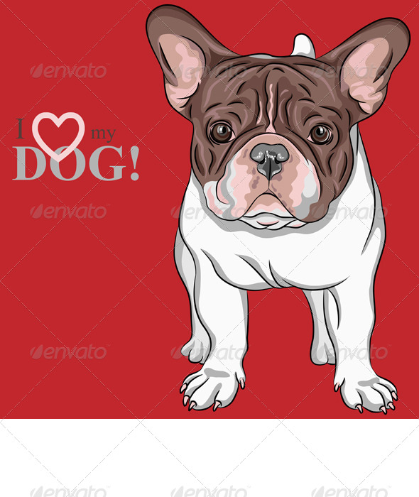 Dog French Bulldog breed - Animals Characters