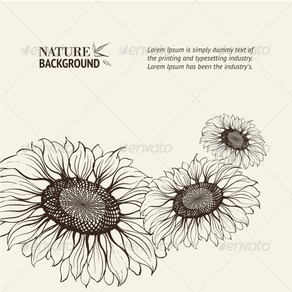 GraphicRiver Illustration of Sunflower 4410898