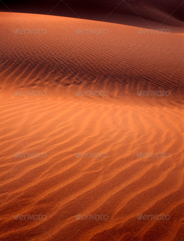 Sand Dune Detail - Stock Photo - Images