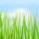 Natural Spring Background - GraphicRiver Item for Sale