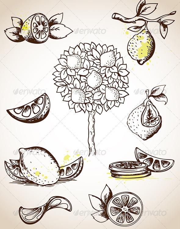 GraphicRiver Vintage Lemons 4424263