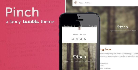 Pinch - a fancy tumblr theme