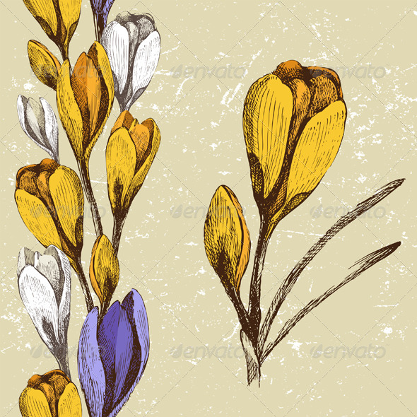 GraphicRiver Crocus Flower and Seamless Floral Border 4431827