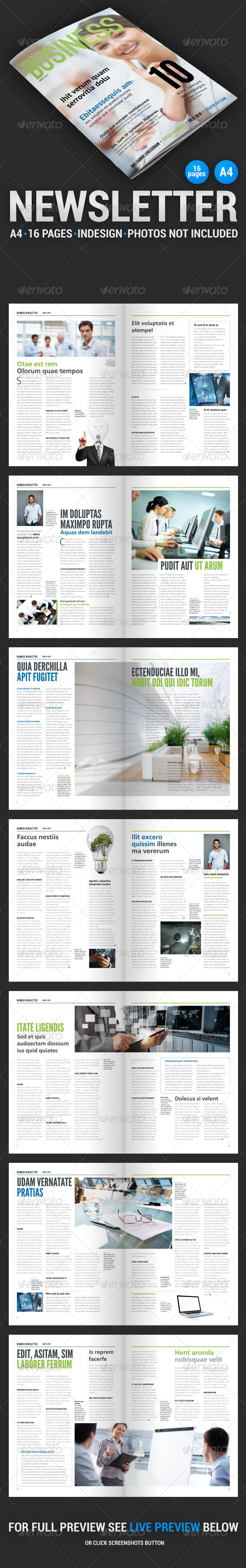GraphicRiver Business Newsletter 2 4432122