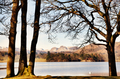 Trees framing Windermere and the Langdale Pikes - PhotoDune Item for Sale