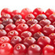 ripe red cranberry, background - PhotoDune Item for Sale