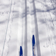 Ski touring and ski tracks in Winter - PhotoDune Item for Sale