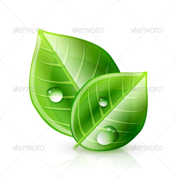 GraphicRiver Green Leaf Ecology Concept 4436470