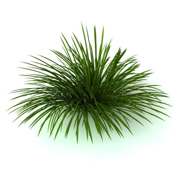 3DOcean 3D Model Wild grass 4448926