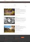 10-orangecore_portfolio_1column_light.__thumbnail
