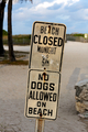 Beach Closed and No Dogs Allowed - PhotoDune Item for Sale