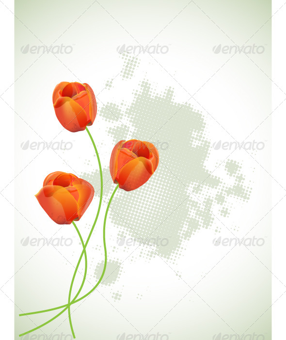 GraphicRiver Red Tulips 4455577