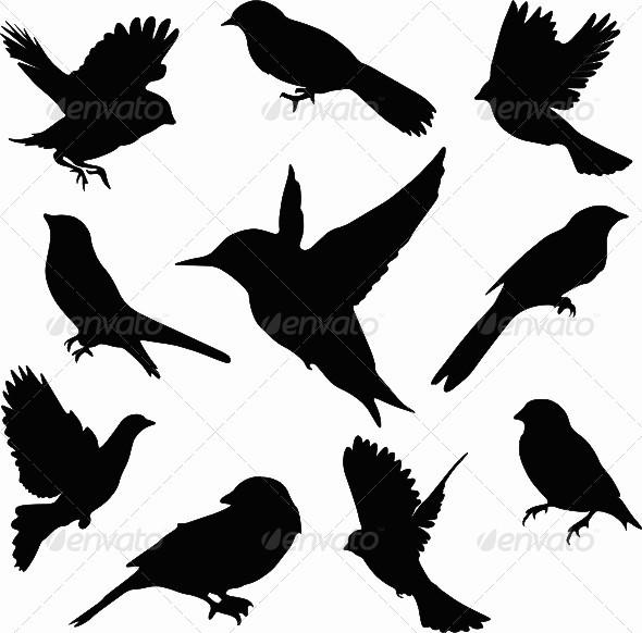 GraphicRiver Vector Bird Set 4456201