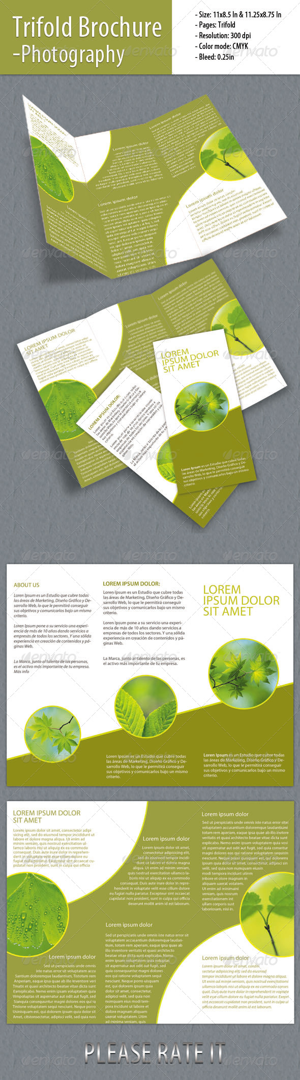 GraphicRiver Trifold Brochure for Green Company 4458498