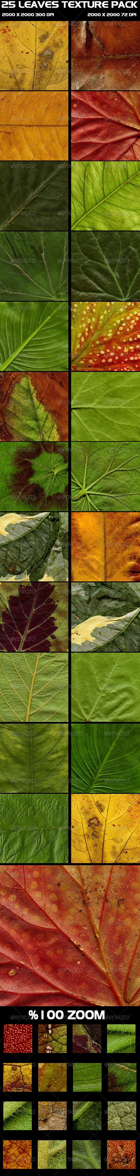 GraphicRiver 25 Leaves Texture Pack 4461262