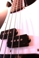 Precision Bass Close Up - PhotoDune Item for Sale