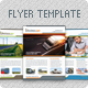 Business Flyer Template in 3 Color Variations - GraphicRiver Item for Sale