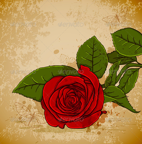 GraphicRiver Vintage Red Rose 4474108