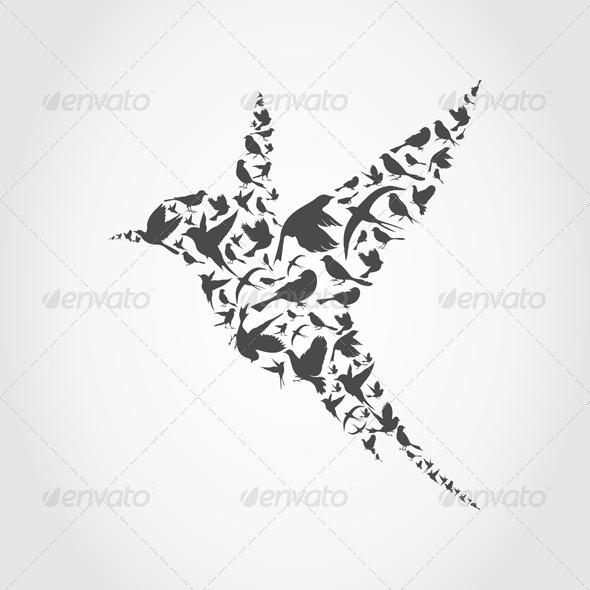GraphicRiver Birdie 4475718