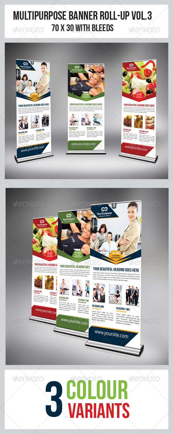 GraphicRiver Multipurpose Business Roll-Up 4476099