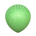 sea shell - PhotoDune Item for Sale