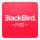 BlackBird - Multi Purpose PSD Template - ThemeForest Item for Sale
