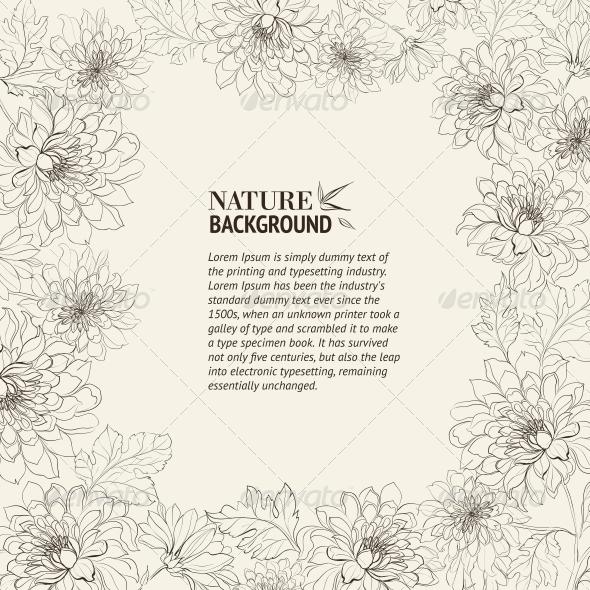 Frame of Chrysanthemum