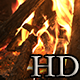 Bonfire - VideoHive Item for Sale