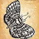 Hand Drawn Butterfly - GraphicRiver Item for Sale