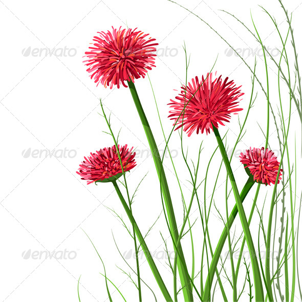GraphicRiver Beautiful Wild Flowers Illustration 4487433