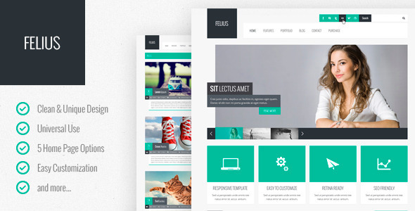 ThemeForest Felius Multipurpose PSD Template 4488912