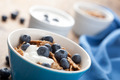 cornflakes with blueberry and yogurt - PhotoDune Item for Sale