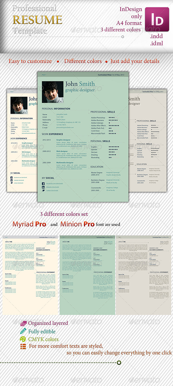 GraphicRiver Professional Elegant Template 4409573