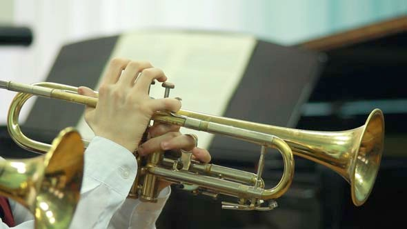 Hands Playing Wind Instrument 6